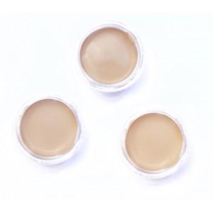 SAMPLES - Bamboo blur tinted moisturizer