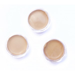 SAMPLES - Full Coverage Fruit pigmented Water foundation (hydration + antioxidants)